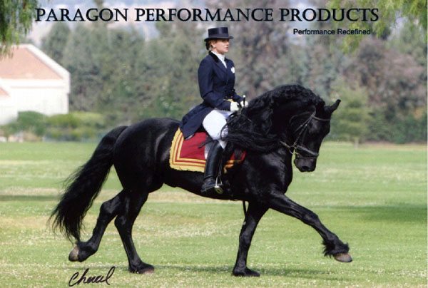 Equilife Products / paragon performance Products